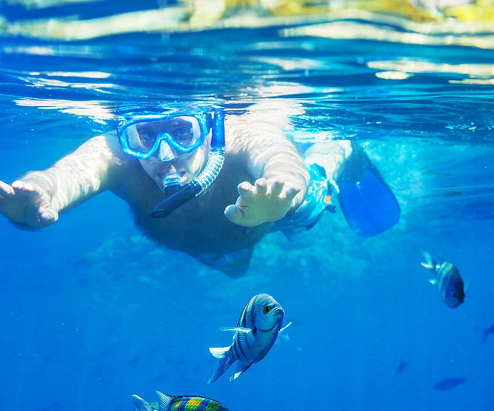 Guy snorkeling in clear blue water