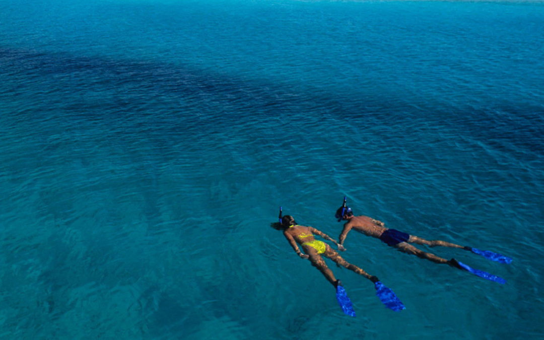 Couple snorkeling in clear blue water