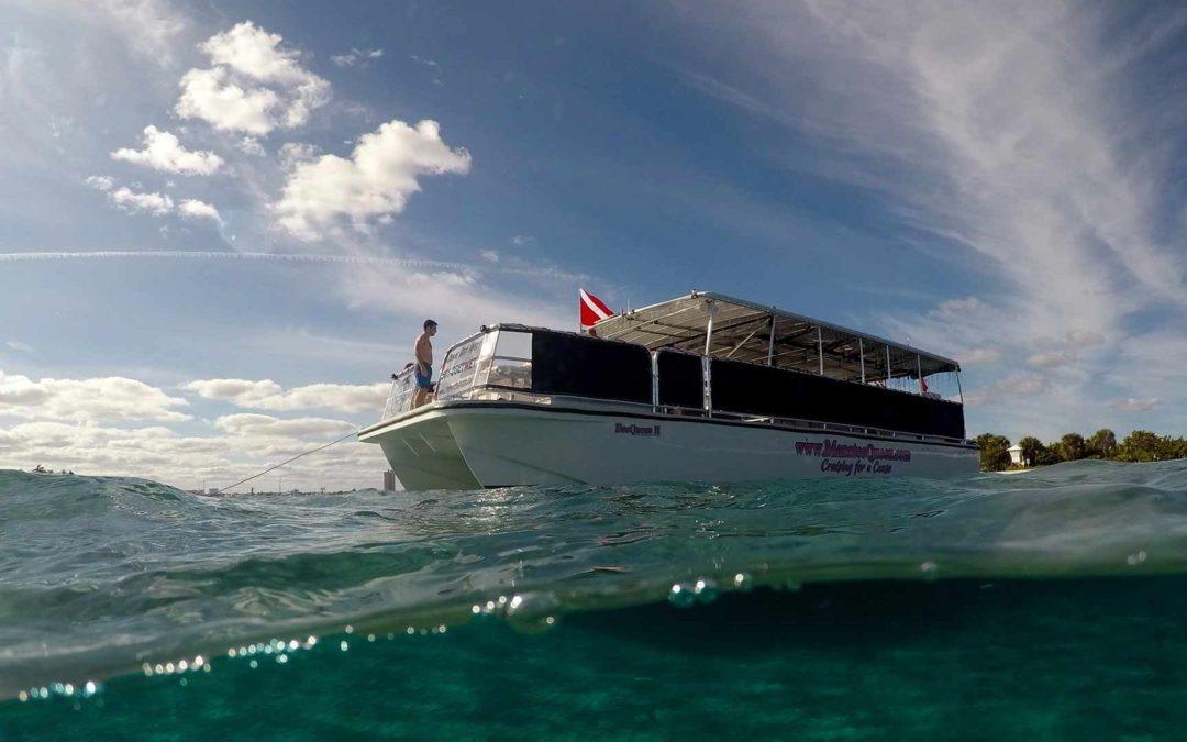 Manatee Queen Pontoon Boat